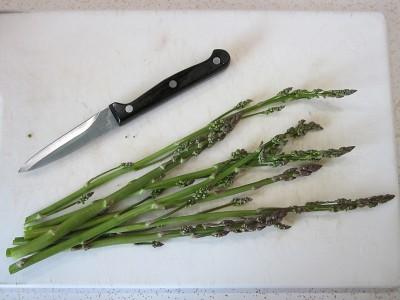 Asparagus - first harvest