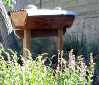 Topbar Beehive with blooming Penstemon