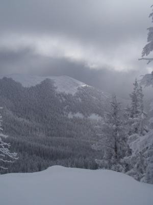 Snowy Day in the Sangre de Cristo Mountains
